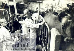 1965 Arthur in the dairy