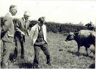 Arthur with visitors in meadow