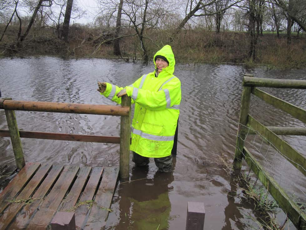 Saturday Sunday pond dipping platform 6th 7th February 2016 010
