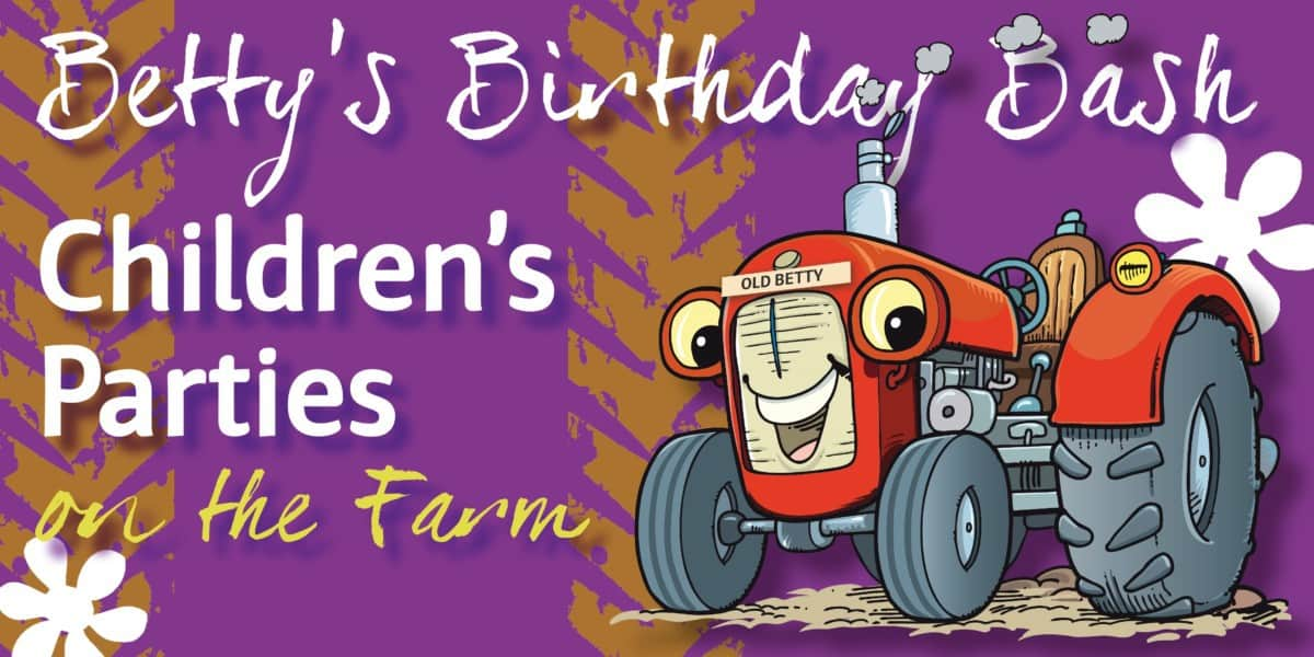 Children's Birthday Parties Fordhall Farm