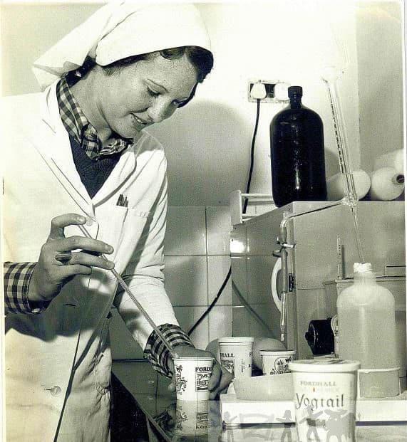 Kathleen Heaton making yoghurt at fordhall organic farm