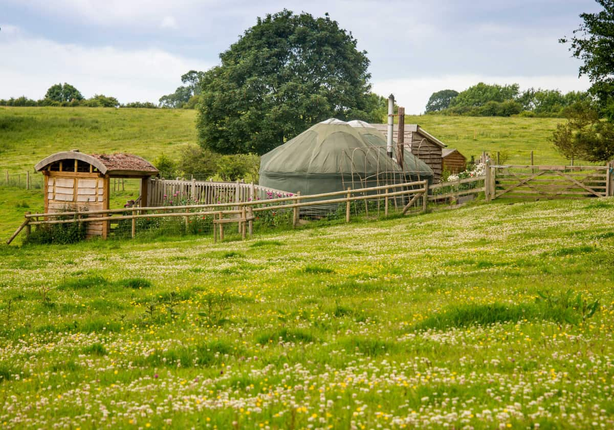 View of yurts