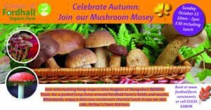 Mushroom Mosey @ Fordhall Organic Farm | United Kingdom