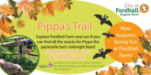 Pippa's Trail in Lockdown @ Fordhall Organic Farm  | Tern Hill | England | United Kingdom