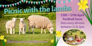 Spring Picnic with the Lambs! @ Fordhall Organic Farm  | England | United Kingdom